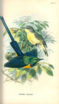 A handbook to the birds of Egypt.