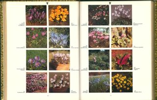 The dictionary of garden plants in colour, with house and greenhouse plants.