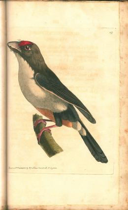 The zoological miscellany; being descriptions of new, or interesting animals. Illustrated with coloured figures, drawn from nature, by R.P. Nodder.