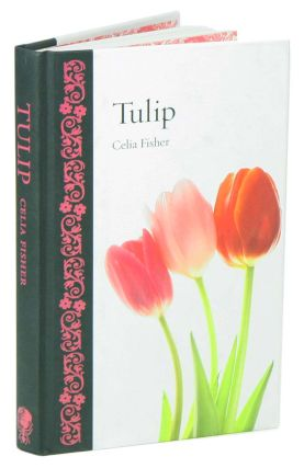 Tulip. Celia Fisher