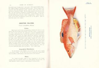 Fishes of Australia and their technology.