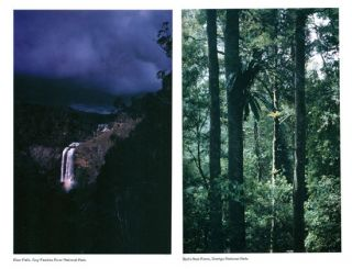 The NPA guide to the national parks of northern New South Wales.