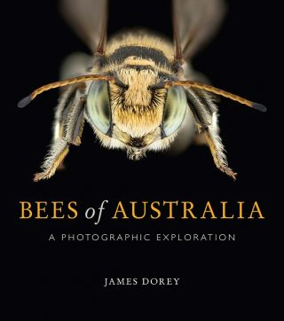 Bees of Australia: a photographic exploration. James Dorey