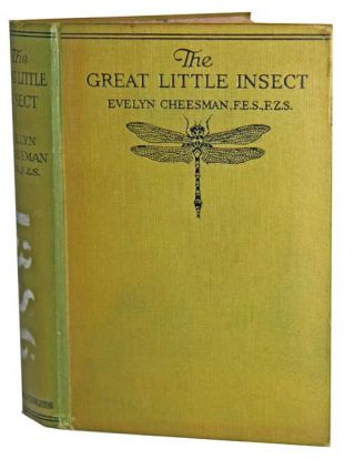 The great little insect. Evelyn Cheesman