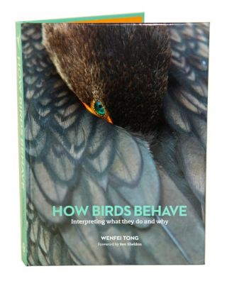 How birds behave: interpreting what they do and why.
