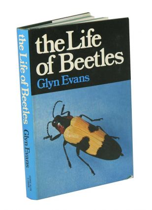 The life of beetles. Glyn Evans