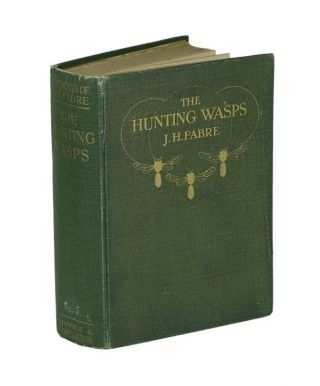The hunting wasps. J. Henri Fabre