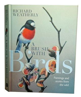 A brush with birds: paintings and stories from the wild. Richard Weatherly