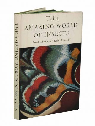 The amazing world of insects. Arend T. Bandsma, Robin T. Brandt
