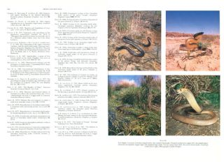 Biology of Australasian frogs and reptiles.