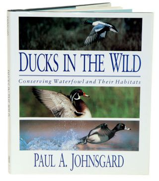 Ducks in the wild: conserving waterfowl and their habitats. Paul Johnsgard