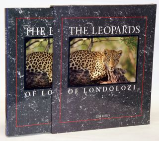 The leopards of Londolozi. Lex Hes.