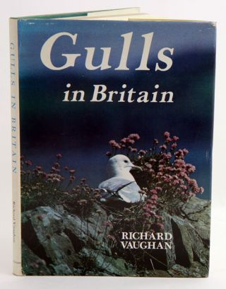 Gulls in Britain. Richard Vaughan