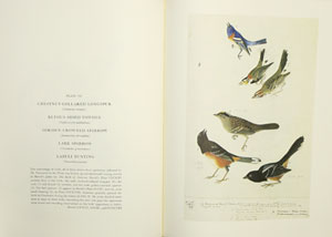 The original water-colour paintings by John James Audubon for the birds of America. Reproduced in colour for the first time from the collection at the New York Historical Society.