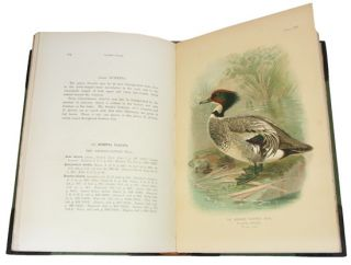 The game-birds of India, Burma and Ceylon: ducks and their allies (swans, geese and ducks), volume one.
