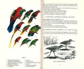 Upland birds of northeastern New Guinea: a guide to the hill and mountain birds of Morobe Province.