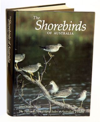 The shorebirds of Australia
