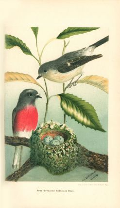 Nests and eggs of Australian birds: including the geographical distribution of the species and popular observations thereon.