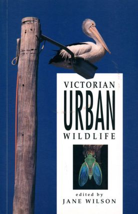 Victorian urban wildlife. Jane Wilson