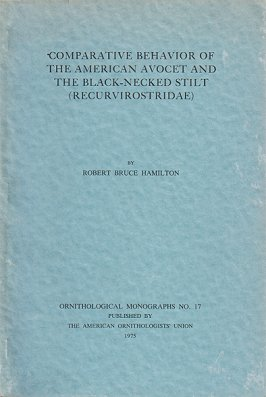 Comparative behavior of the American Avocet and the Black-necked Stilt (Recurvirostridae). Robert...