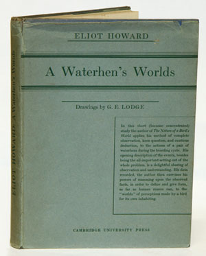 A waterhen's worlds. Eliot Howard.