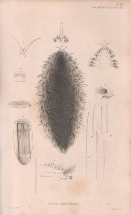A catalogue of the British non-parasitical worms in the collection of the British Museum.
