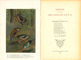 Birds of the island of Java.