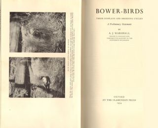 Bower-birds: their displays and breeding cycles. A preliminary statement.