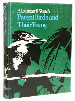 Parent birds and their young