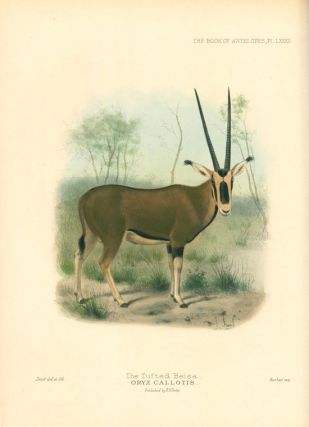The book of antelopes.