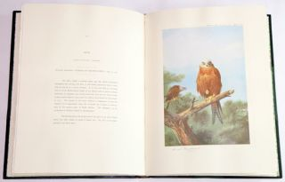 Thorburn's birds of prey: a facsimile of the 1919 edition with a new forward.