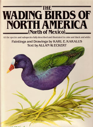 The wading birds of North America (north of Mexico