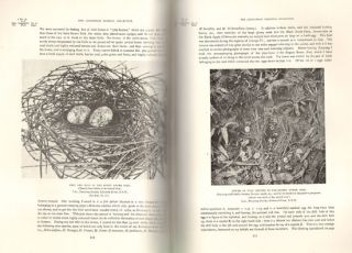 "Egg collecting and bird life of Australia: catalogue and date of the ""Jacksonian Oological Collection,"" illustrated with numerous photographs depicting various incidents and items ..."