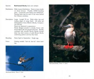 A visitor's guide to the birds of Christmas Island, Indian Ocean.