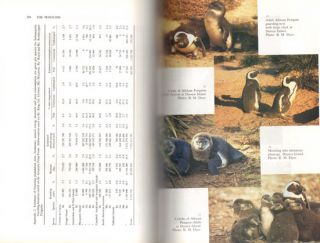 The penguins: ecology and management.