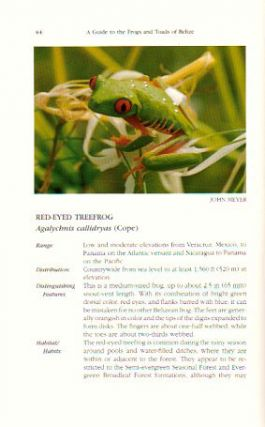 A guide to the frogs and toads of Belize.